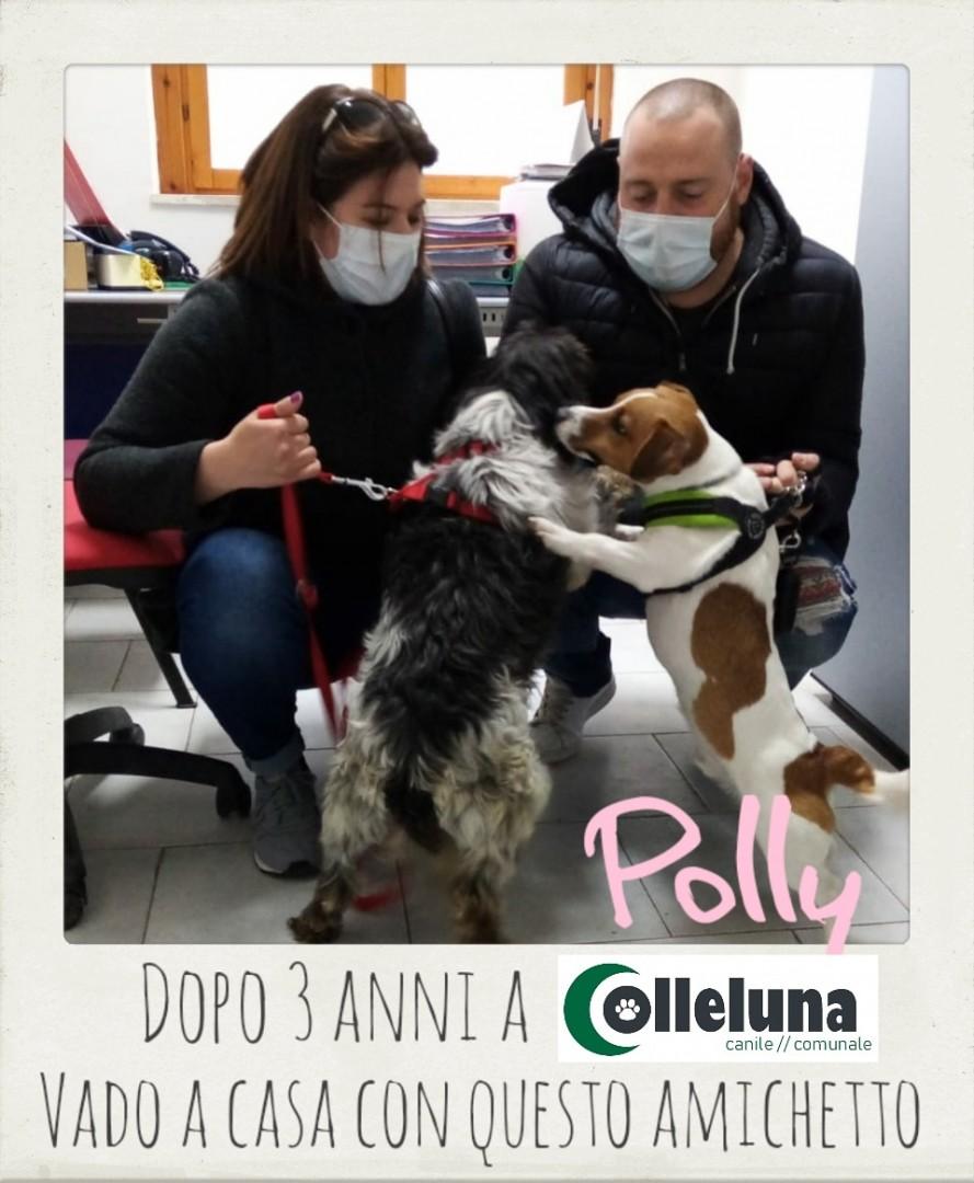 Polly adottata